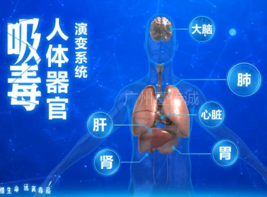 吸毒人体器官演变系统(触屏版)