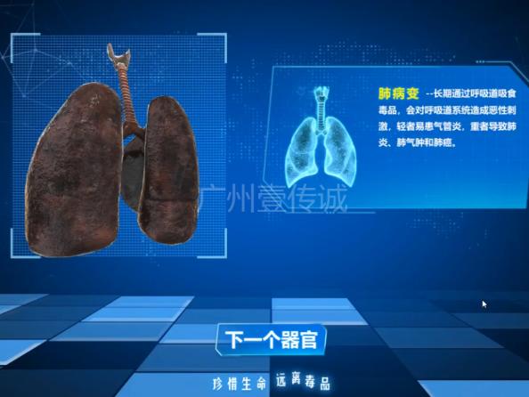 吸毒人体器官演变系统(触屏版)--广州壹传诚